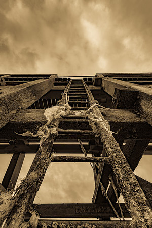 The rusty Ladder