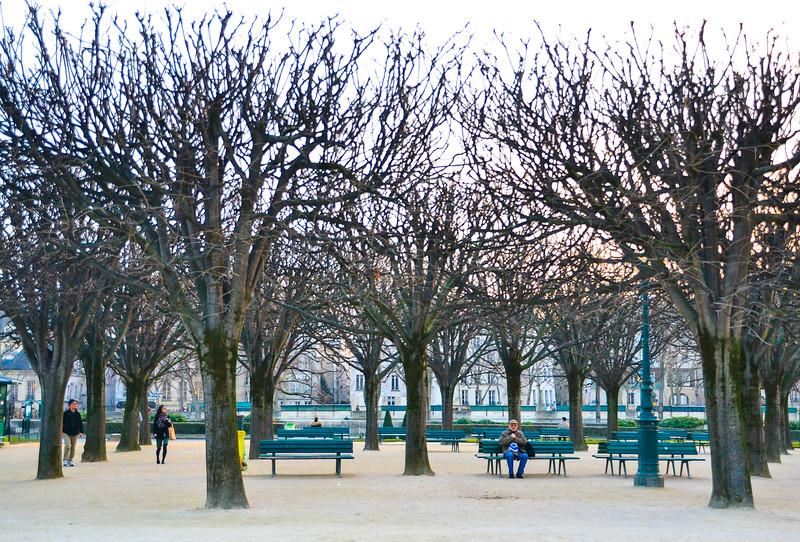 Park near Notre-Dame Cathedral<br /> Paris