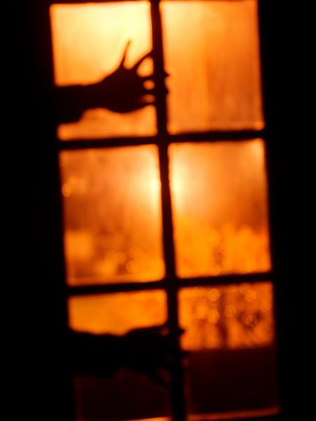 free me - Oliveirinha - Março 2011  -  6790