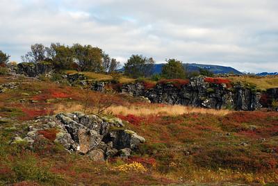 Haustlitirnir eru fagrir á Þingvöllum