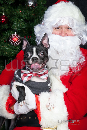 FSPCA 2017 Santa Photos