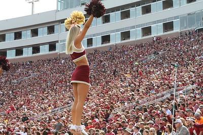 2015 Cheerleader