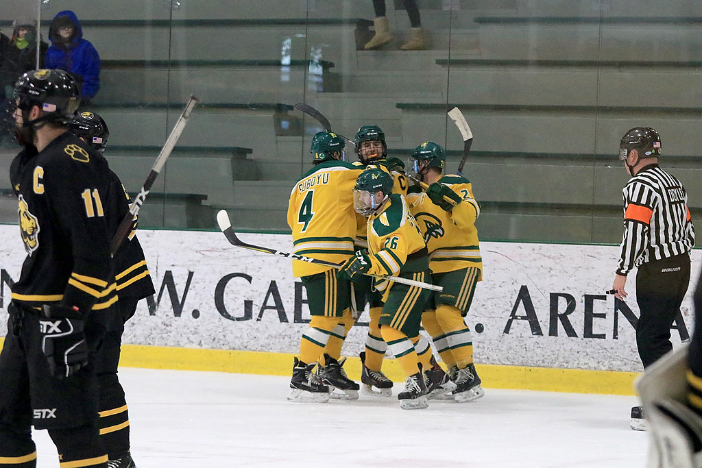 . Fitchburg State University hockey played Wentworth Institute on Saturday, January 12, 2018 at the Wallace Civic Center in Fitchburg. FSU celebrates the first goal of the game. SENTINEL & ENTERPRISE/JOHN LOVE