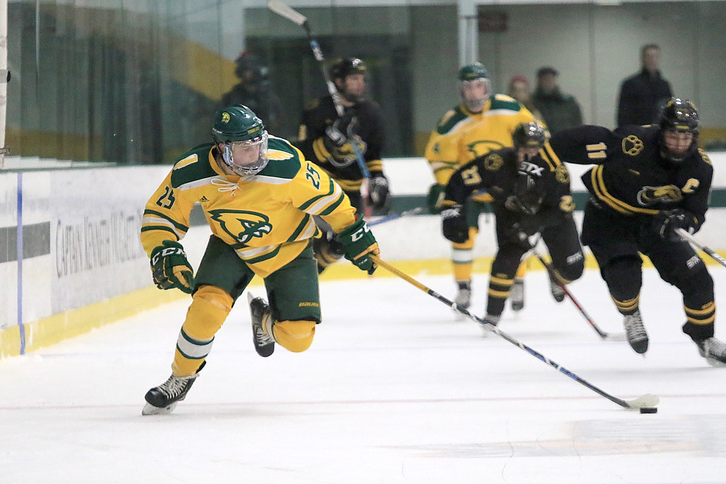 . Fitchburg State University hockey played Wentworth Institute on Saturday, January 12, 2018 at the Wallace Civic Center in Fitchburg. FSU\'s Dean Zerby gets control of the puck and takes off down ice and ends with the first pints of the game. SENTINEL & ENTERPRISE/JOHN LOVE