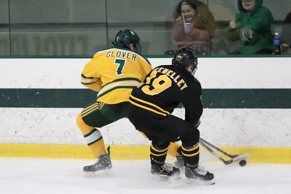 . Fitchburg State University hockey played Wentworth Institute on Saturday, January 12, 2018 at the Wallace Civic Center in Fitchburg. FSU\'s Brian Glover  and WI\'s Joey McKenelley fight for control of the puck. SENTINEL & ENTERPRISE/JOHN LOVE
