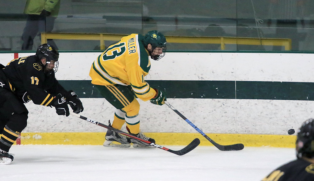 . Fitchburg State University hockey played Wentworth Institute on Saturday, January 12, 2018 at the Wallace Civic Center in Fitchburg. FSU\'s Joseph Miller and WI\'s Byron Carlisle go after a loose puck in the first period of the game. SENTINEL & ENTERPRISE/JOHN LOVE