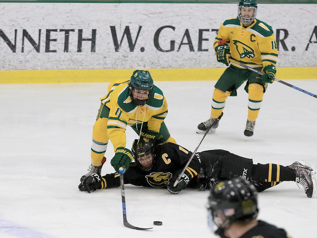 . Fitchburg State University hockey played Wentworth Institute on Saturday, January 12, 2018 at the Wallace Civic Center in Fitchburg. FSU\'s Sascha Figi reaches over WI\'s Ethan Weiss for the puck after Weiss hit the ice and lost the puck. SENTINEL & ENTERPRISE/JOHN LOVE