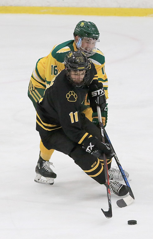 . Fitchburg State University hockey played Wentworth Institute on Saturday, January 12, 2018 at the Wallace Civic Center in Fitchburg. FSU\'s Michael Fretz tries to stop WI\'s Ethan Weiss. SENTINEL & ENTERPRISE/JOHN LOVE