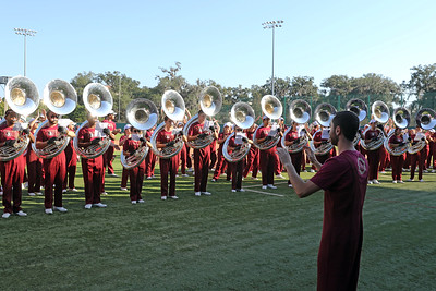 Tuba Section