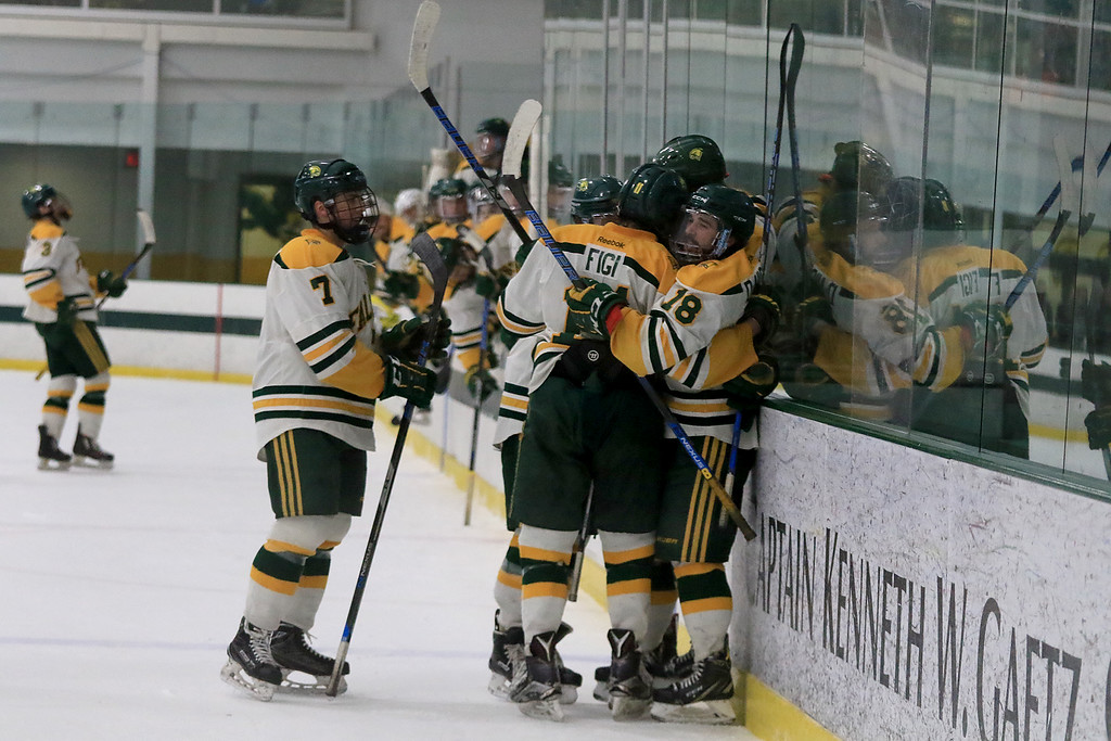 . Fitchburg State University men\'s hockey played Westfield State University on Saturday, February 16, 2019 at FSU\'s Wallace Civic Center. FSU celebrates their second goal of the game in the first period. SENTINEL & ENERPRISE/JOHN LOVE
