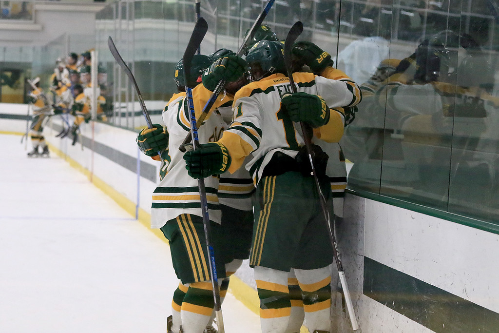 . Fitchburg State University men\'s hockey played Westfield State University on Saturday, February 16, 2019 at FSU\'s Wallace Civic Center. FSU celebrates their first goal of the game in the first period by Ryan Murphy. SENTINEL & ENERPRISE/JOHN LOVE