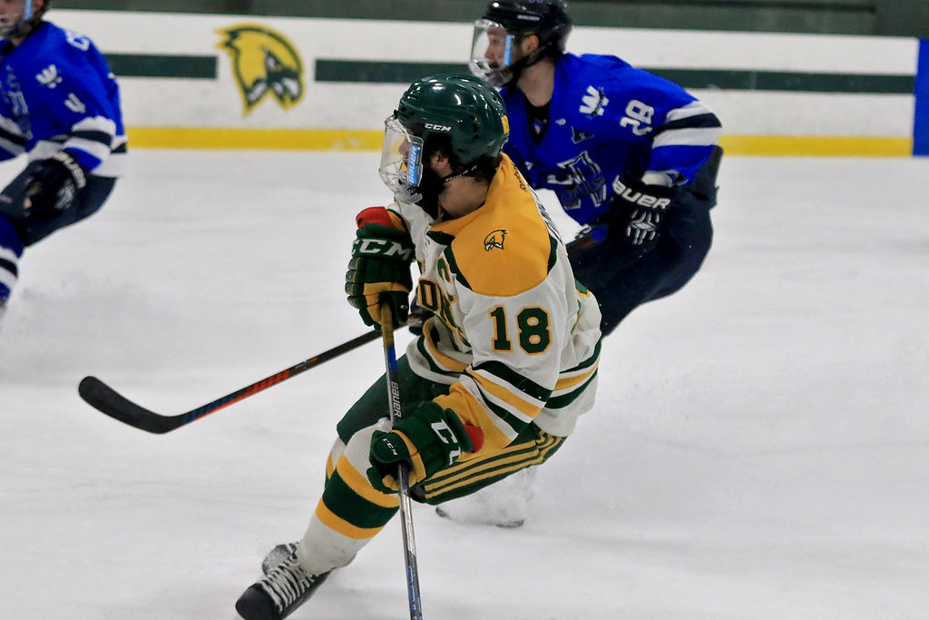 . Fitchburg State University men\'s hockey played Westfield State University on Saturday, February 16, 2019 at FSU\'s Wallace Civic Center. FSU\'s Nick DiNicola watches his breakaway shot on gaol go in during action late in the first period. SENTINEL & ENERPRISE/JOHN LOVE