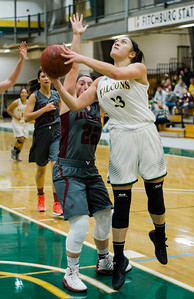 FSU Womens Basketball v. Anna Maria