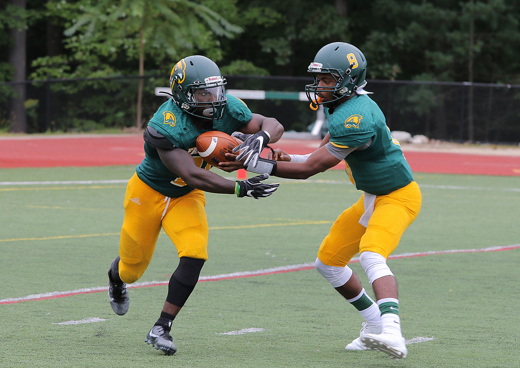 . Fitchburg State University Falcons took on Castleton Spartans on Saturday afternoon in Fitchburg. Brandon Brown hands the ball off to Jacqua Solomon during action in the game. SENTINEL & ENTERPRISE/JOHN LOVE