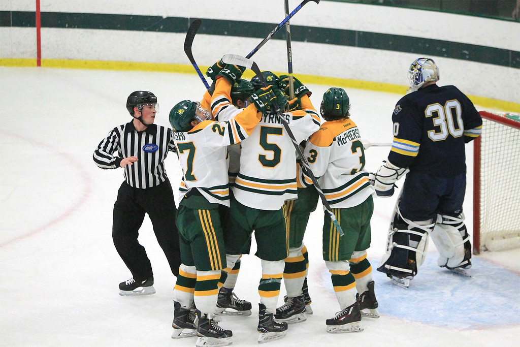 . Players celebrate 1st goal 17 plus min into the 2nd period goal by Kyle Hillick  SENTINEL&ENTERPRISE/Scott LaPrade