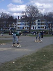 April 24, 2004: WW04 Saturday events on the Green.  Women's alum chopping: Steph Tuxhill '92, Kim Iwamoto '03, and (next movie) Elaine Anderson '83.