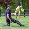 First Toss of Spring-MAD Dogs-3109