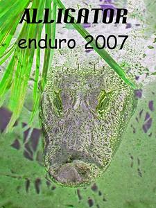 G2 Alligator 2007