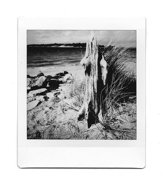 bramble bush bay, studland, dorset