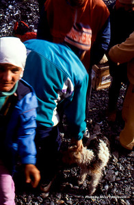 Durmo, in the front, waiting for the gear. Hamo is greeting little dog on the moraine heliport at South Inylchek glacier base camp.  - Durmo, u prvom planu, ceka da preuzme opremu. Hamo pozdravlja malog psa na sletilistu kod Baznog Kampa na Juznom Inylchek gleceru.