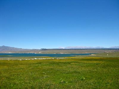 Green & blue, Lake Crowley