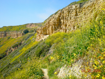 The cliffs. Main trail is on the ridge.