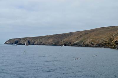 Landing Cove