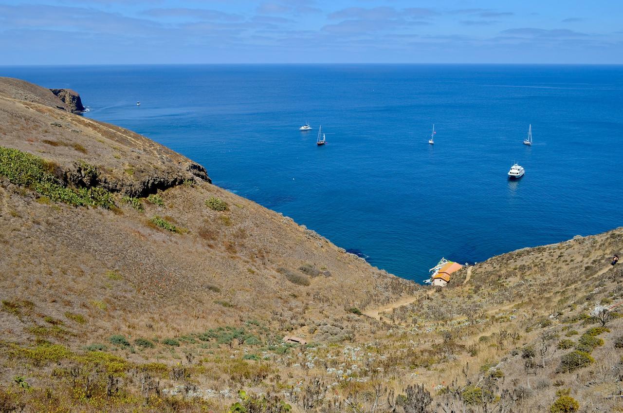 Boats at Landing Cove