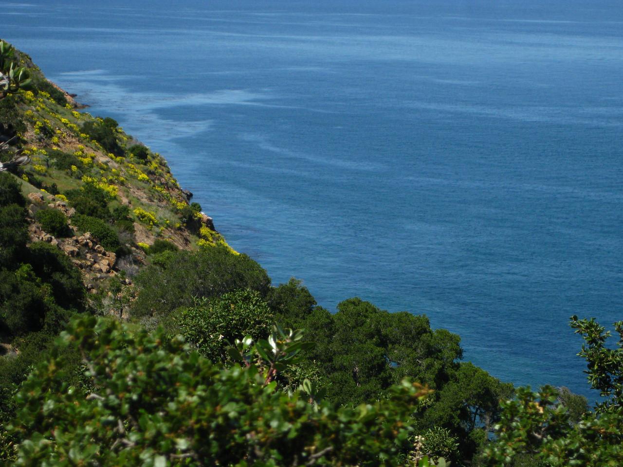 Pristine coastline of Santa Cruz Island.