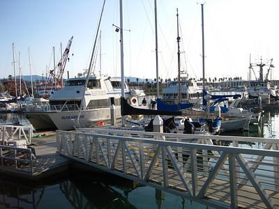 Island Packers boats in Ventura Harbor Marina