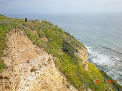 On the cliffs.