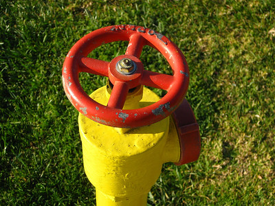 The hydrant at front of Island Packers' check-in office