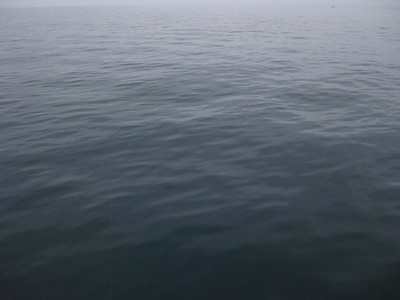 The ocean was totally flat