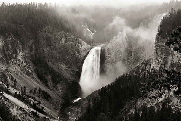 Yellowstone National Park Scenery