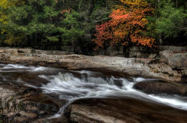 Wild Cat River rapids