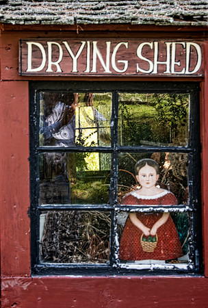 Window at the Drying Shed