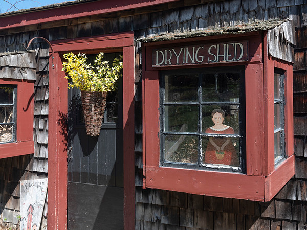 The Drying Shed