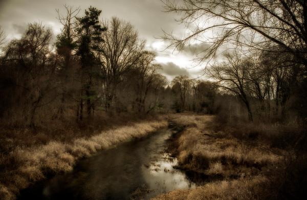 Stony Brook in late Fall