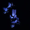 FZ50 - Lastours, Cathar Castle by Night (Sound and light)<br /> f/4.5 - 8s - 136 mm - 100 iso