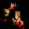 FZ50 - Lastours, Cathar Castle by Night (Sound and light)<br /> f/5.6 - 6s - 191 mm - 100 iso