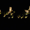 FZ50 - Lastours, Cathar Castle by Night (Sound and light)<br /> f/5.0 - 4s - 87 mm - 100 iso