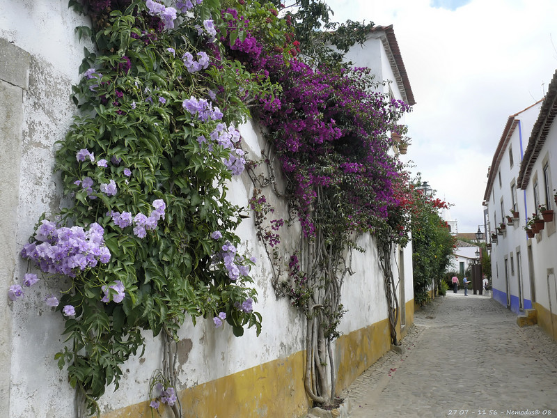 Obidos<br /> - F5.6 - 1/80 - 35mm - 100 ISO