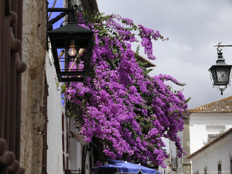 Obidos<br /> - F6.3 - 1/500 - 114mm - 100 ISO