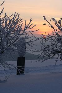 Frost og vinterstemning rundt hjortehegnet.