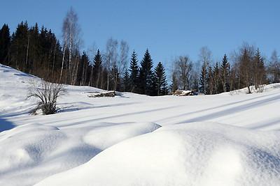 Vinterlandskap og lyse vakre vinterdager i hjorteoppdrettet.