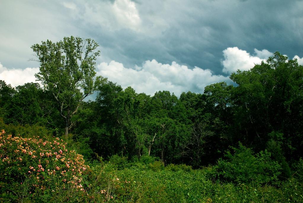 Oconee County (GA) May 2011