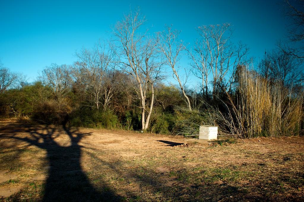 Clarke County (GA) December 2014