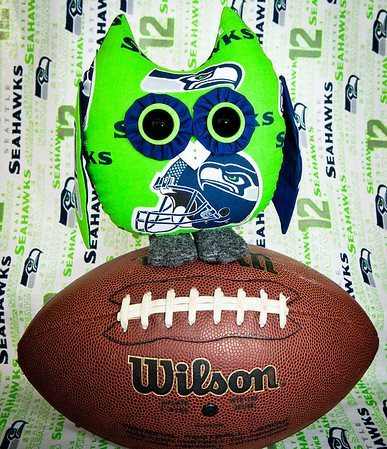 Seattle Seahawks Owl Pal $23 + Shipping