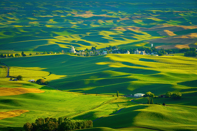 Evening Shadows in the Palouse