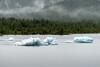 Glacier Ice